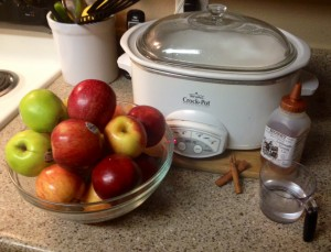 apples, cinnamon sticks, honey, water and of course...your crockpot