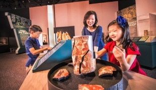 Maya: Hidden Worlds Revealed at the Denver Museum of Nature & Science