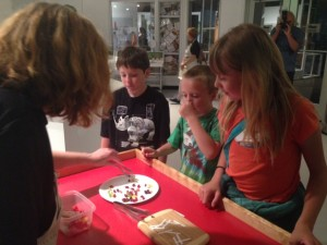 Jelly Belly taste experiment