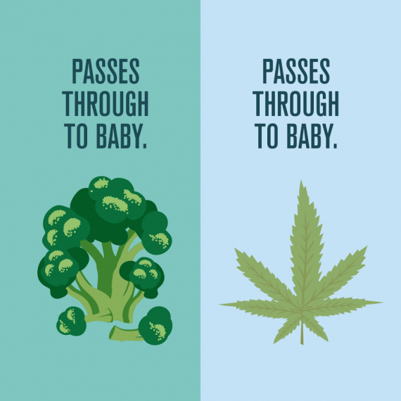 Colorado Department Of Public Health And Environment: Pregnancy + Marijuana: What Every Mom Should Know