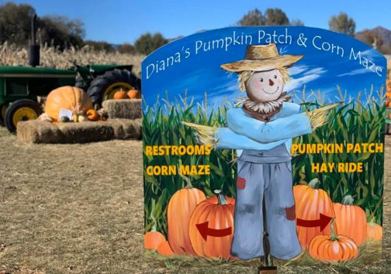 Diana's Pumpkin Patch and Corn Maze