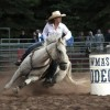 Colorado has a summer rodeo for every cowboy, cowgirl. Saddle up.