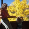 Colorado has many ways to get your leaf-peeping fix; we share 4 faves